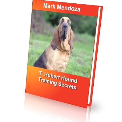 Bloodhound training secrets how to train a bloodhound finally i present an ebook dedicated specifically to lovers of t hubert hounds fandeluxe Image collections